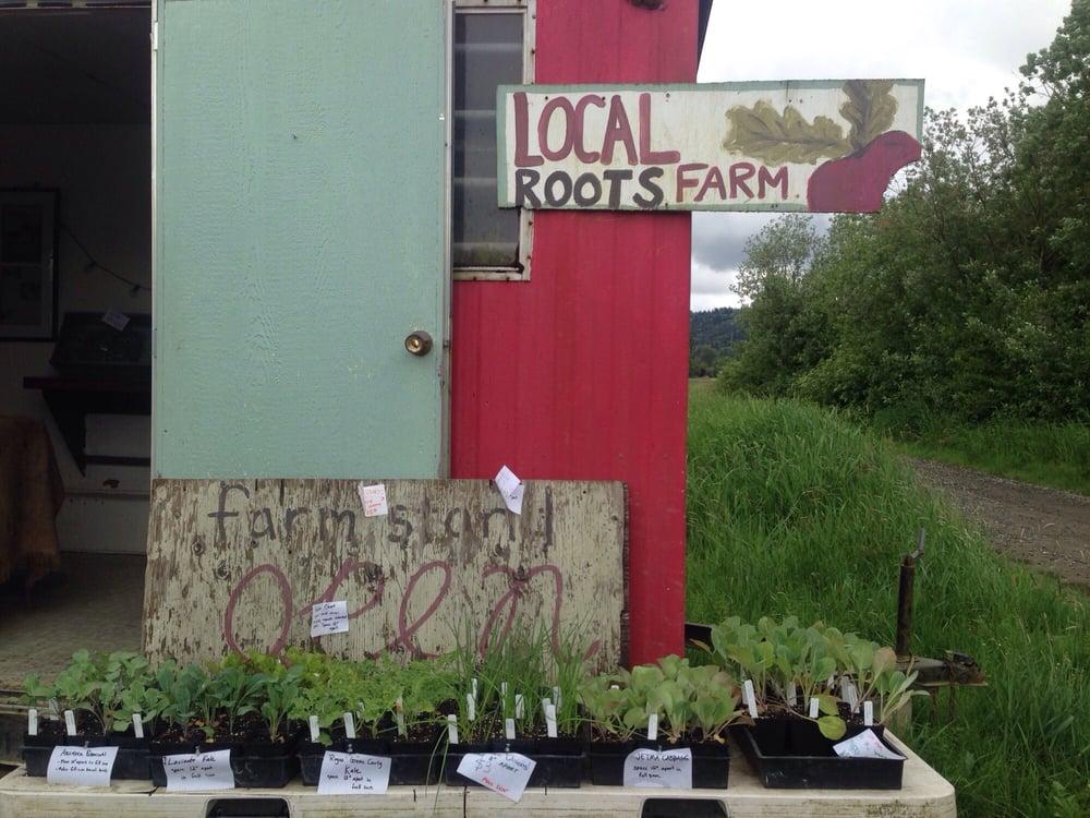 Local Roots Farm: 11707 262nd Ave NE, Duvall, WA