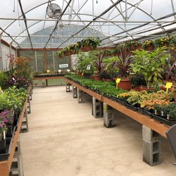 Photo Of N M Herb Nursery Hubbard Or United States