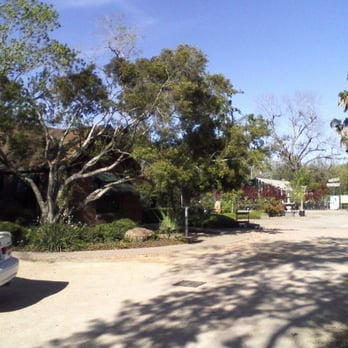 Photo Of Teas Nursery Bellaire Tx United States