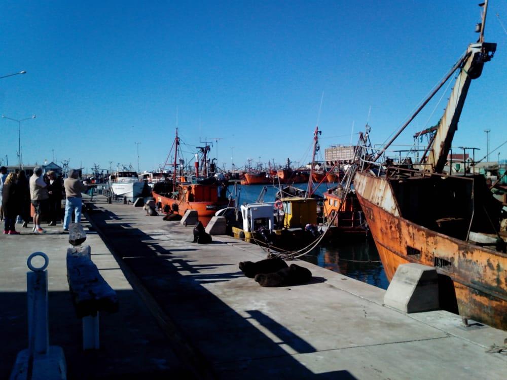 Banquina de Pescadores: Oceano Pacifico S/N, Mar del Plata, C