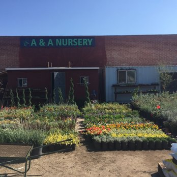Photo Of Eden Nursery Los Angeles Ca United States