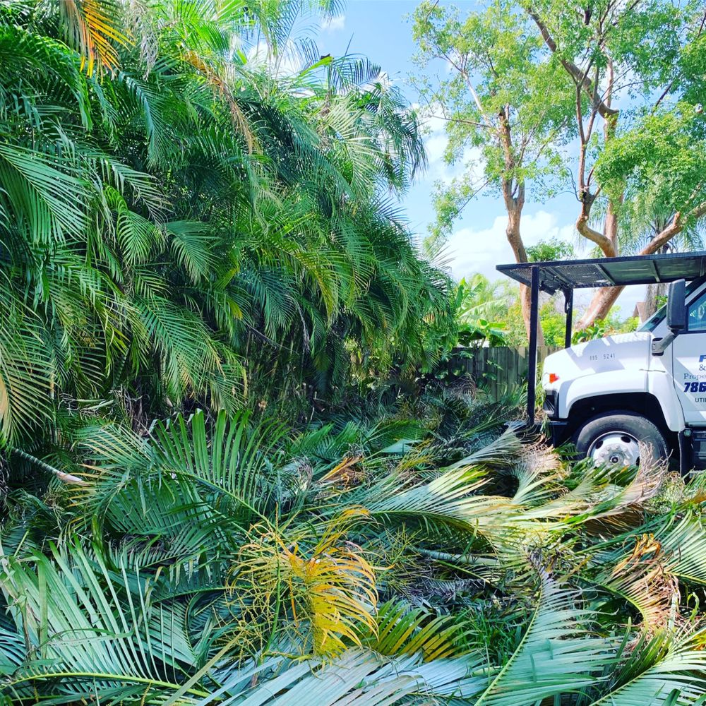 Defender Landscape Services: Homestead, FL