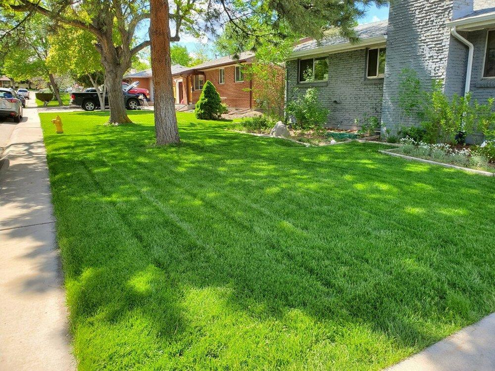 Tim's Sprinkler: 3479 W Berry Pl, Littleton, CO