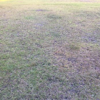 Photo Of TruGreen Lawn Care   Jacksonville, FL, United States