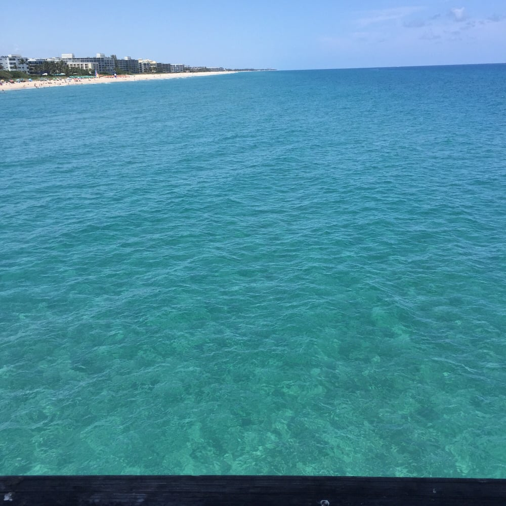 Water is so clear you can see lots of fish in the water for Lake worth pier fishing