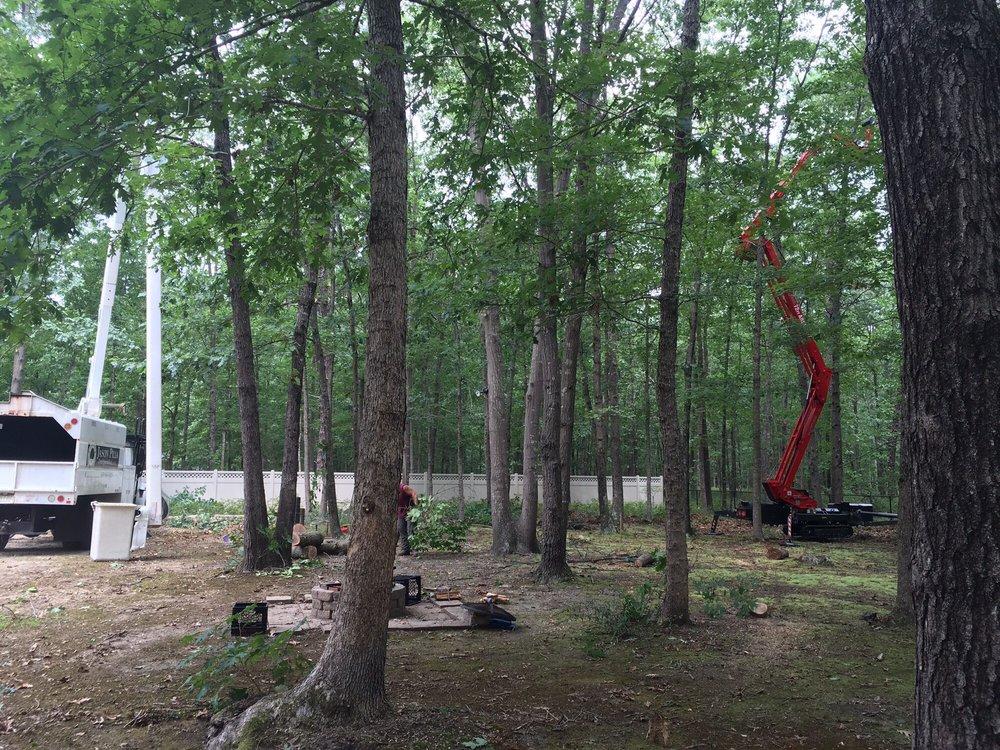 Jason Pilla Tree Specialist, LLC