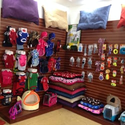 Pet care tiendas de mascotas general gomez pedraza 3 for Clinica condesa citas