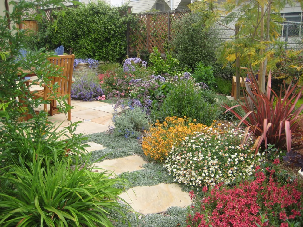 Best ideas about drought tolerant garden designs drought for Plants garden design