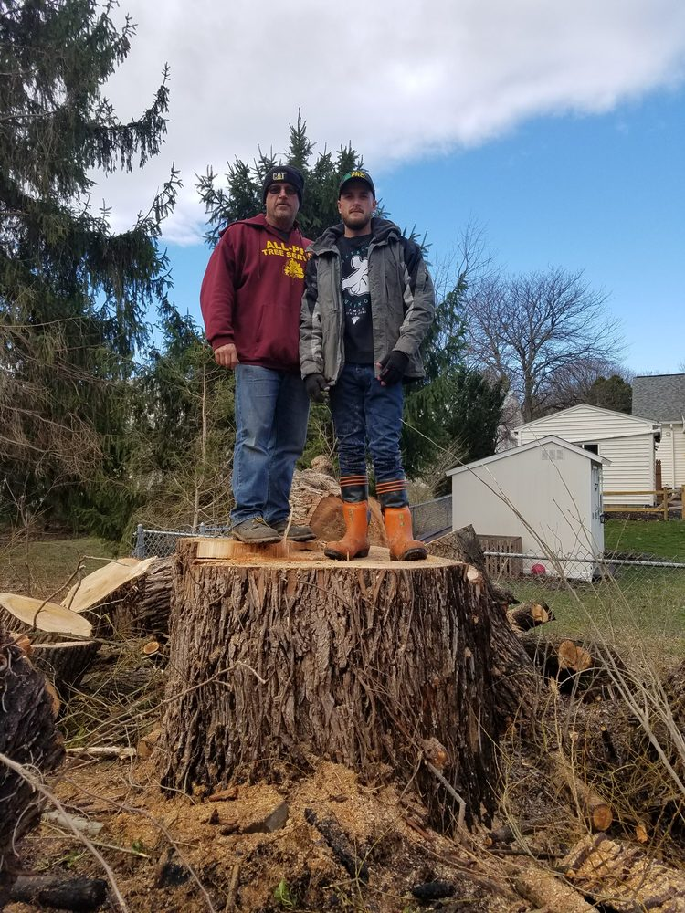 All Pro Tree & Landscaping Service: 1737 State Rte 48, Fulton, NY