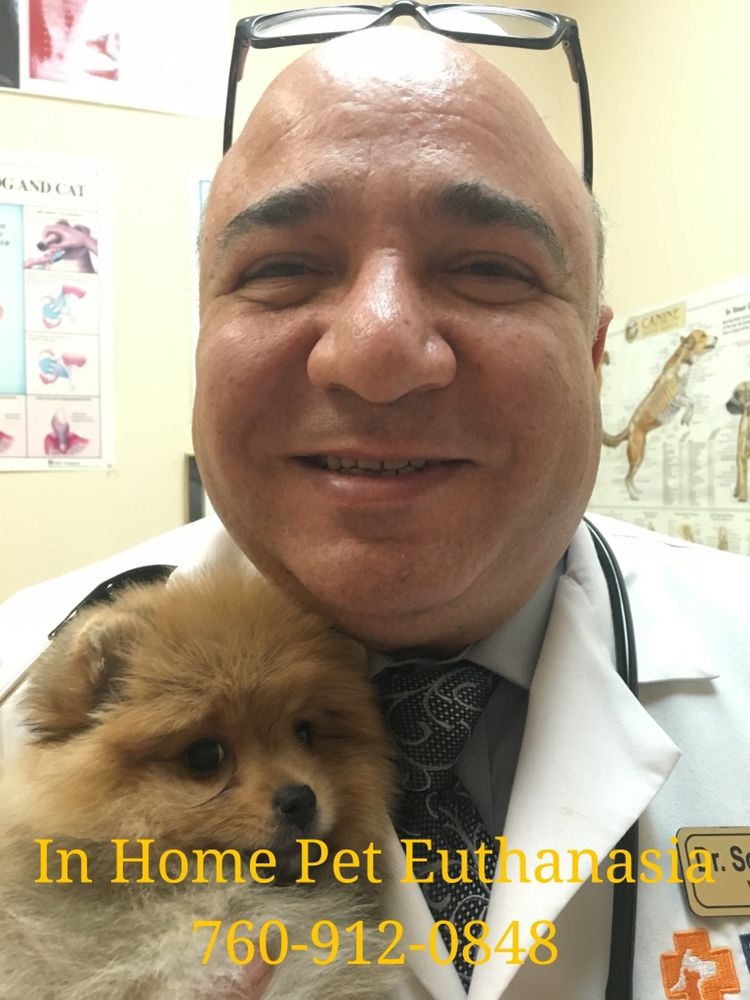 Pet home euthanasia service 43 reviews pet cremation services pet home euthanasia service 43 reviews pet cremation services rancho cacumonga ca phone number yelp solutioingenieria Image collections