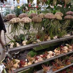 Mahoneys Garden Centers 22 Photos 57 Reviews Nurseries