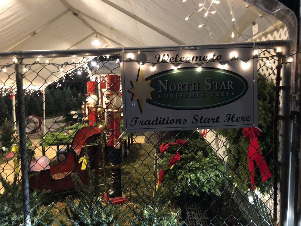North Star Christmas Trees: 2550 E W Hwy Service Rd, Chevy Chase, MD