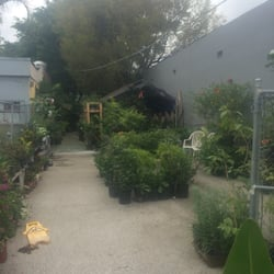 Photo Of My Family Garden Nursery Miami Fl United States Just