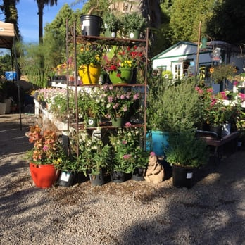 Photo Of Andersons La Costa Nursery Encinitas Ca United States Nice People