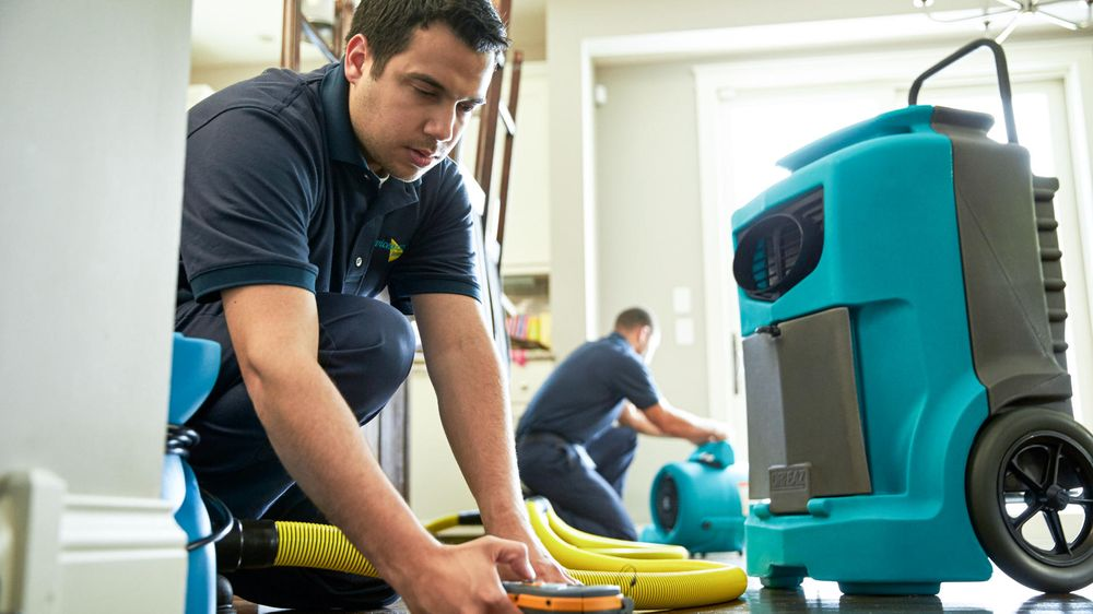 ServiceMaster Restoration and Cleaning: 540 E Townline Rd, Turtle Lake, WI