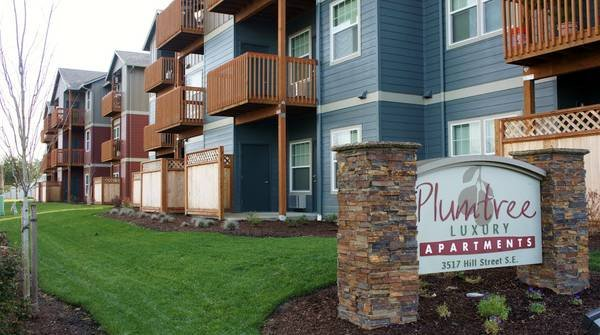 Plumtree Luxury Apartments: 3517 Hill St SE, Albany, OR