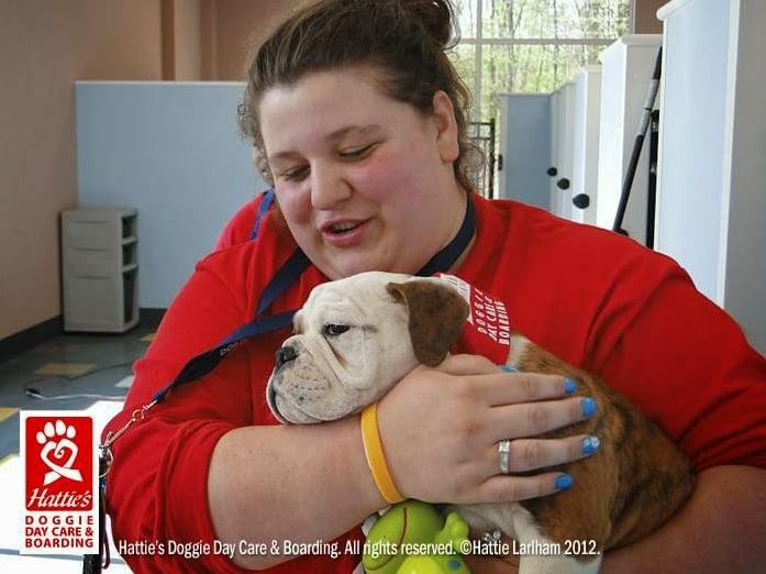Hattie's Doggie Day Care & Boarding: 2778 Greensburg Rd, North Canton, OH