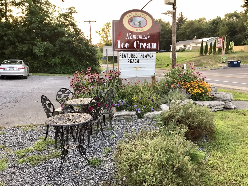 Duck Pond Farms: 4448 Western Turnpike, Altamont, NY