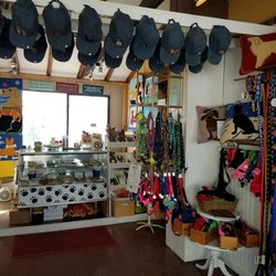 Photo of Good Dog Gallery - Rockport, MA, United States. Hats in ever