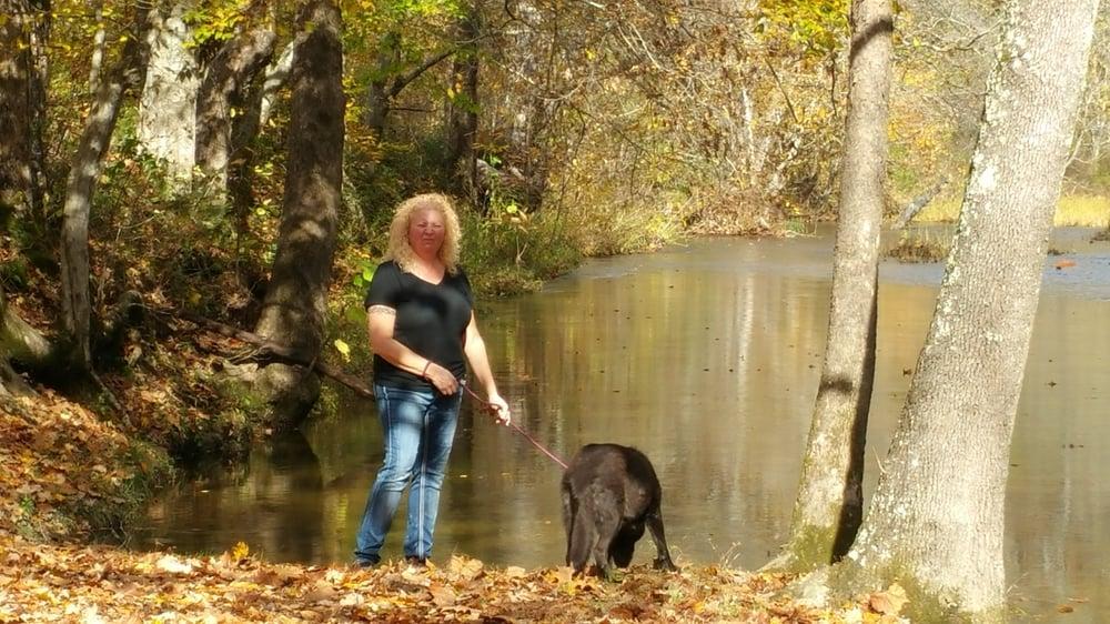 Fall Hollow: 1329 Columbia Hwy, Hohenwald, TN