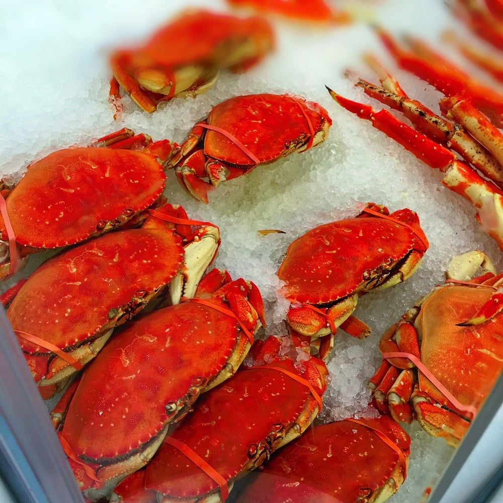 Dungeness Crabs  Great Football Watching Food  It's game day