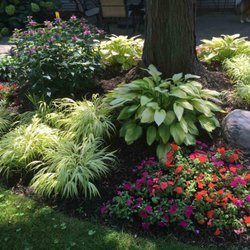 Photo Of Green City Gardens   Northbrook, IL, United States. Color And  Texture