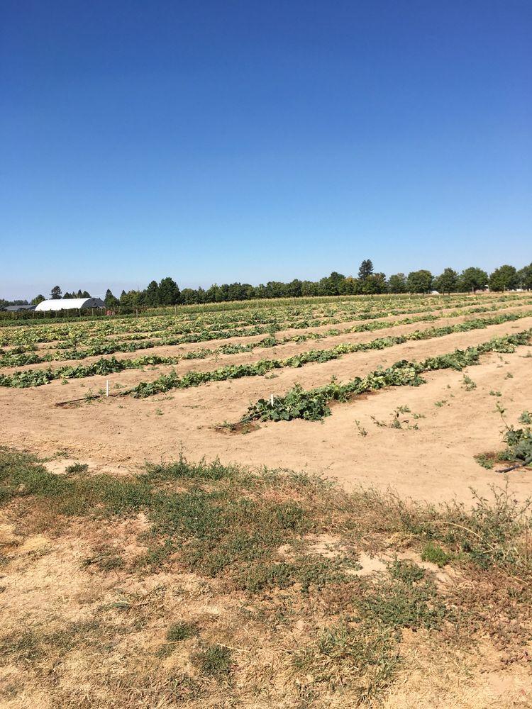 Eleven Acres Farms: 10909 E Day Mt Spokane Rd, Mead, WA