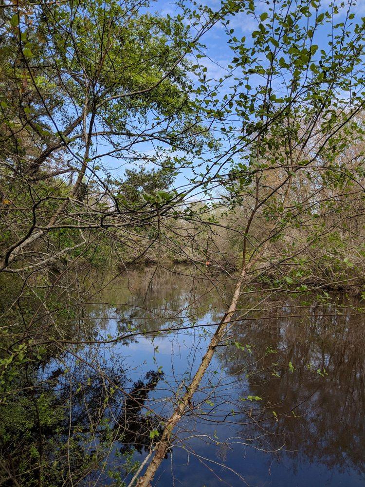 Photo of Reed Bingham State Park: Adel, GA