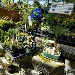 Photo Of Mid City Nursery American Canyon Ca United States