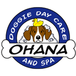 Ohana Doggie Day Care Spa