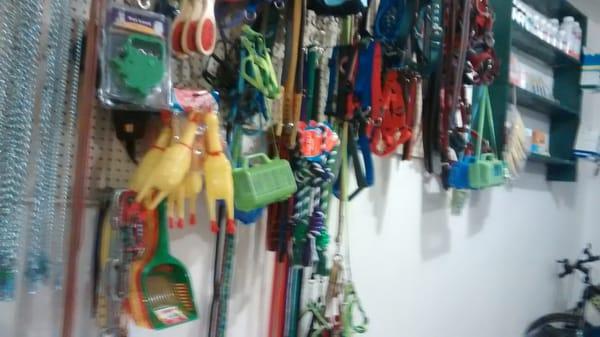 Las palmas tienda de mascotas av cucapah 22500 for Av puerta del sol