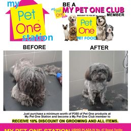 My Pet One Station Get Quote 11 Photos Pet Stores Rm 1103