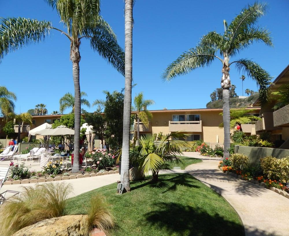 Restaurants Solana Beach Yelp