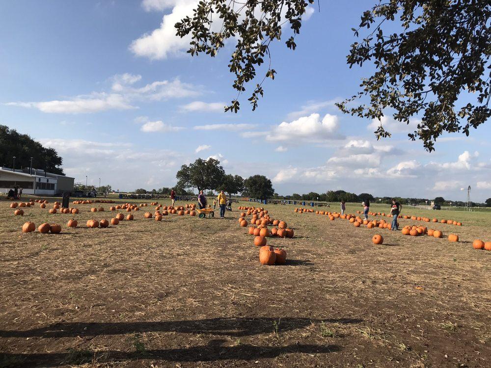 South Texas Maize: 911 US Hwy 90 E, Hondo, TX