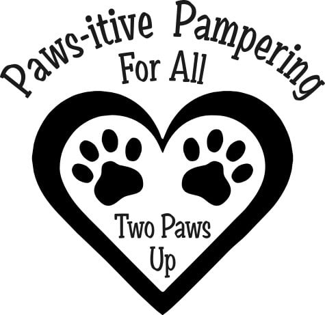 Two Paws Up: 101 Ossipee Lake Rd, Tamworth, NH