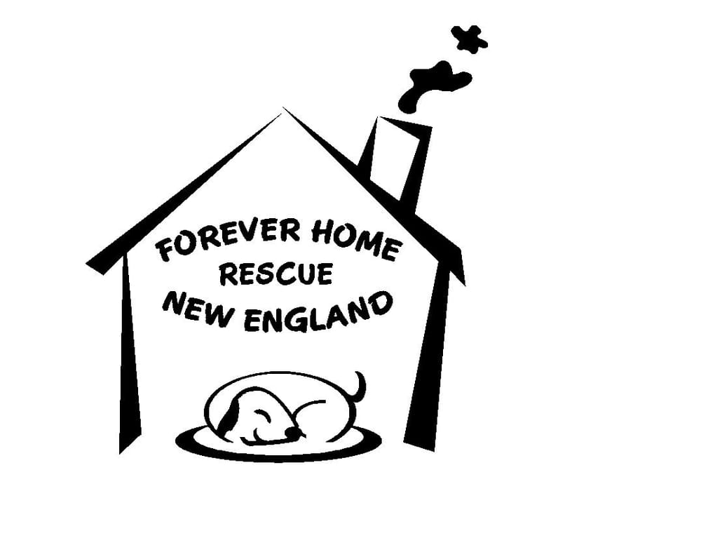 Forever Home Rescue New England: 106 Adams St, Medfield, MA