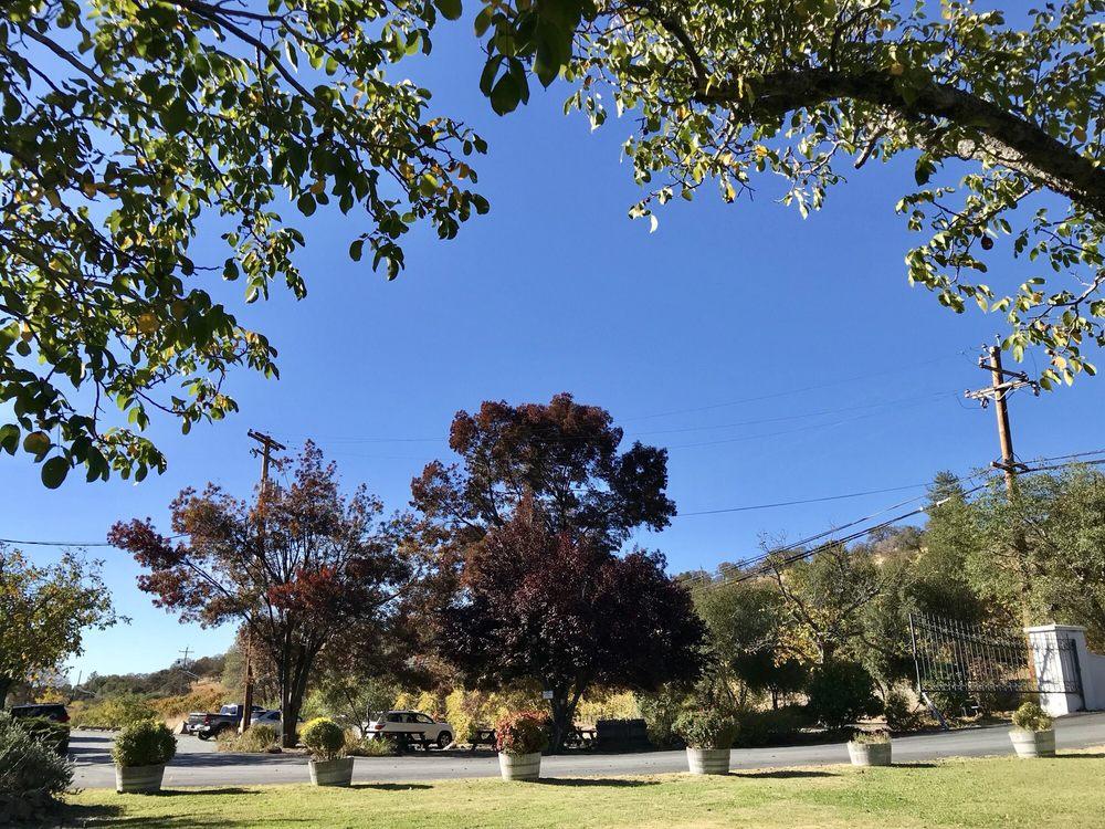 Sobon Estate: 14430 Shenandoah Rd, Plymouth, CA