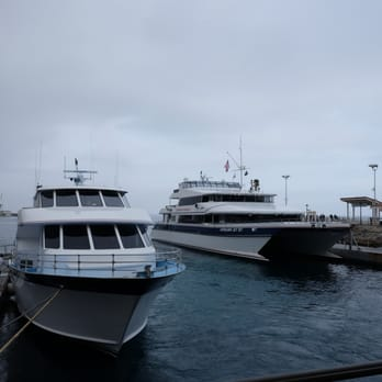 Coupons for catalina express from dana point