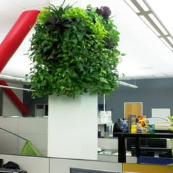 Creative Plant Design Indoor Landscaping 1670 Las Plumas Ave