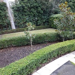 Vision horticulture landscaping 33617 19 memorial ave st ives photo of vision horticulture st ives new south wales australia gardening st ives workwithnaturefo