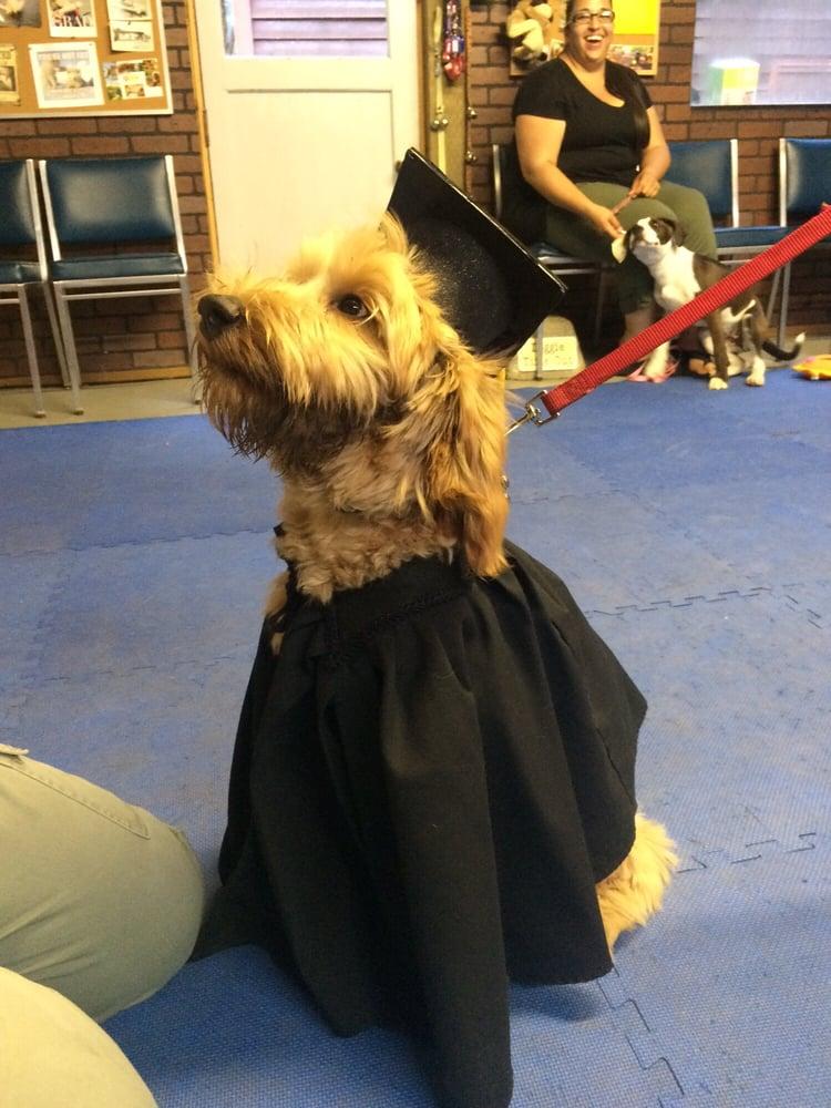 Sunny Lane Canine Academy: 7407 Sunny Ln, Sedro Woolley, WA