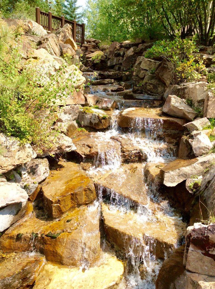 Betty Ford Alpine Garden 156 Photos 18 Avis Jardin Botanique 522 Vail Valley Dr Vail