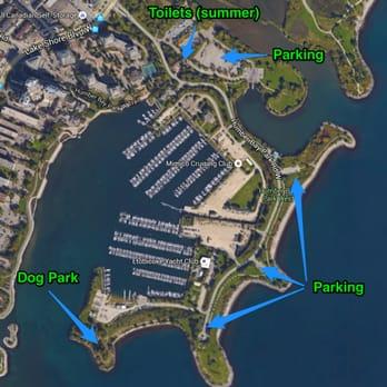Humber Bay Park West Off Leash Dog Park Dog Parks 2225