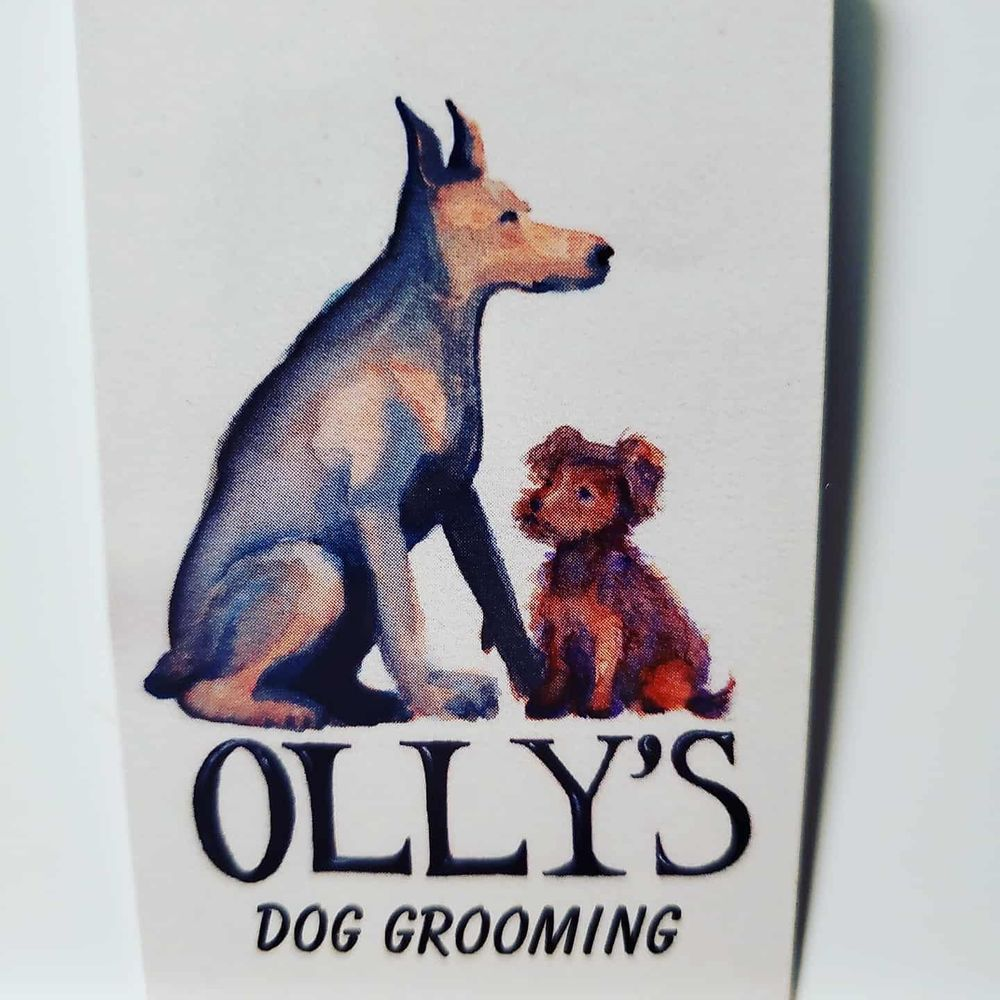 Olly's Dog Grooming: 175 S Capitol Ave, San Jose, CA
