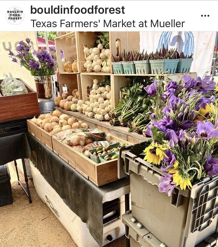 Bouldin Food Forest: 9410 FM 437, Rogers, TX