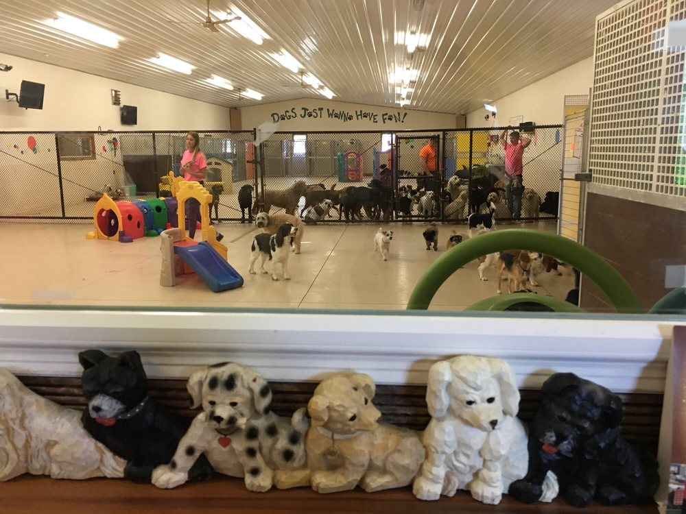 All Tails 'R' Waggin': 12591 Worthington Rd SW, Pataskala, OH