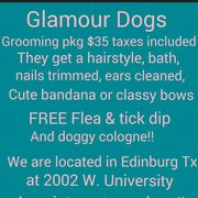 Glamour dogs edinburg tx