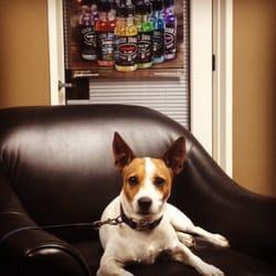 Photo of Smokeless Success - Long Beach, CA, United States. Rocky waiting on the vape master..