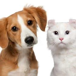 Washpaw 36 reviews pet groomers 4811 trousdale dr nashville photo of washpaw nashville tn united states solutioingenieria Images
