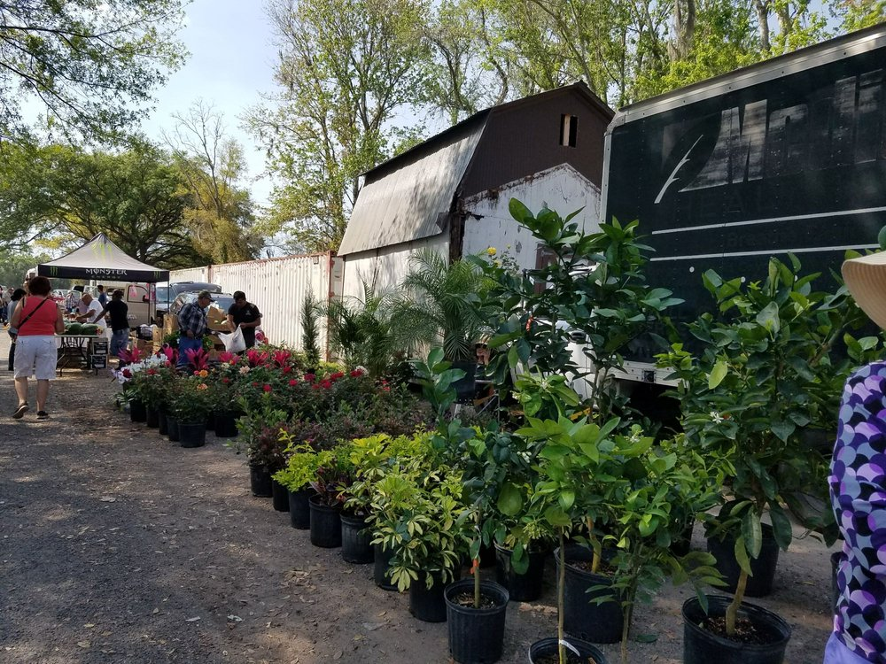 Plant City Farm Market: 702 W Sam Allen Rd, Plant City, FL